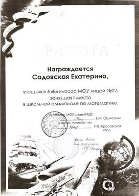 2008 г. Садовская Екатерина за 1 место в школьной олимпиаде по математике.